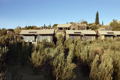 Namibia-Wildlife-Tours-Olive-Grove-Exclusive_Lodges
