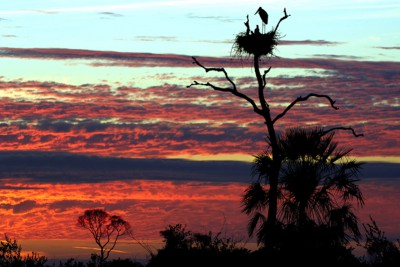 Brazil-Tailormade-Tours-Pouso-Alegre-Lodge_Sunset