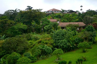 Costa-Rica-Wildlife-Tours_Accommodation_Villa-Blanca-Cloud-Forest-Hotel-and-Nature-Reserve-exterior-view