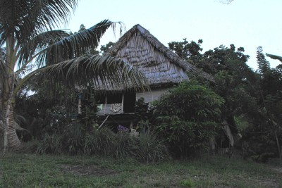 png-wildlife-tours_accommodation_wagu_guesthouse_1